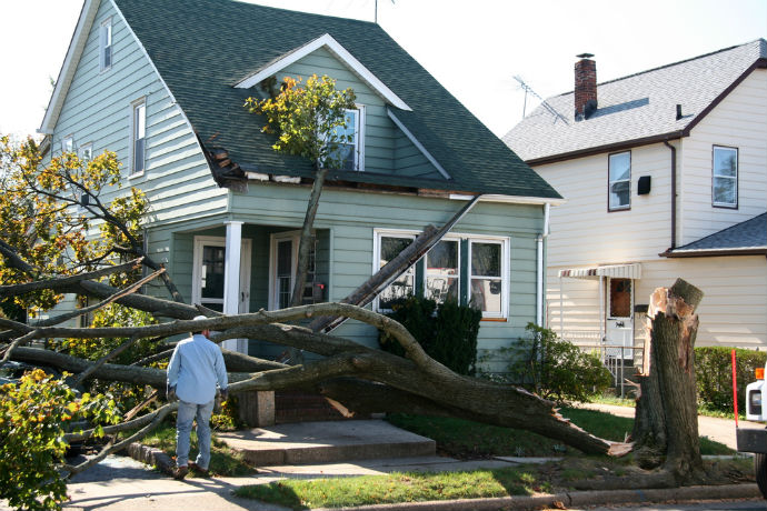 Image of Damaged House from Tree Collapse Due to Storm